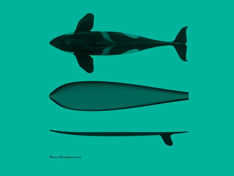 giulio-iacchetti-surf-o-morph-surfers-den-designboom-05