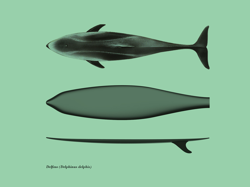 giulio-iacchetti-surf-o-morph-surfers-den-designboom-06