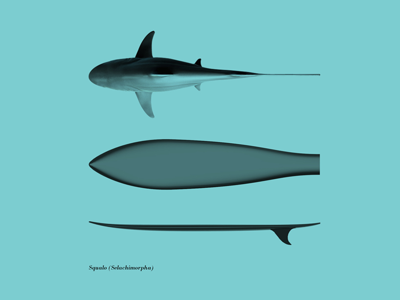 giulio-iacchetti-surf-o-morph-surfers-den-designboom-07