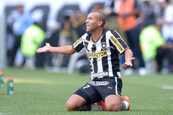 Botafogo v Santos - Brasileirao Series A 2014
