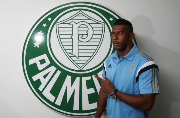 Aranha (Palmeiras)