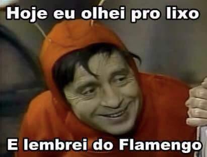 flaavai2