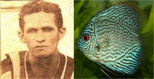 Peixe (Foto: Reprodução/Futepoca - Arte Janaína Santista)
