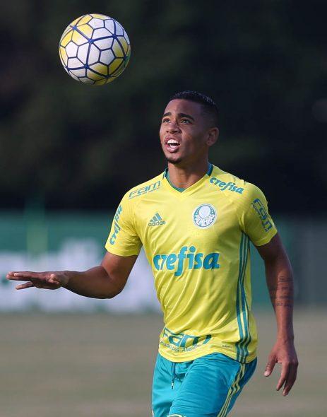 Foto: Cesar Greco/ Ag. Palmeiras/Divulgação