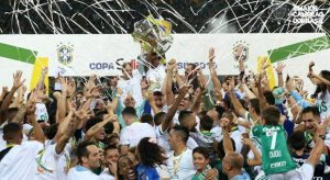 Palmeiras campeão da Copa do Brasil 2015: Foto: Cesar Greco.