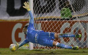 Palmeiras perde para Botafogo