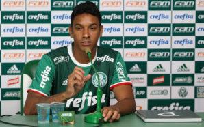 Foto: Reprodução / Ag. Palmeiras
