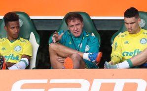 Enquete: Qual foi a melhor contratação do Palmeiras em 2016? Vote!