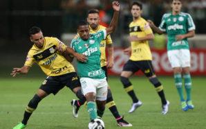 Palmeiras x São Bernardo