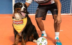 Rocha defenderá o Magnus Futsal nesta temporada