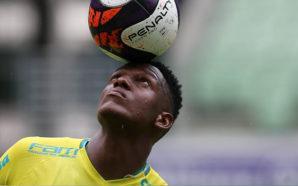 Foto: Divulgação/Cesar Greco/Ag. Palmeiras