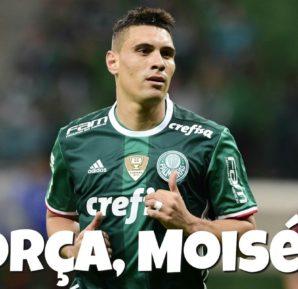 Foto: Reprodução/Twitter Palmeiras
